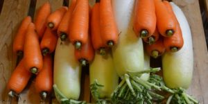 野菜の差し入れ