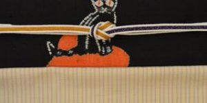 猫柄の帯で飯田紬をコーディネート