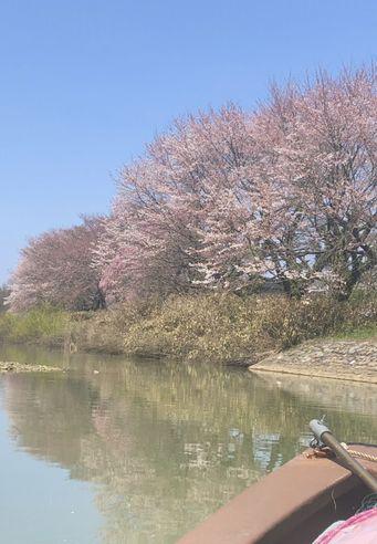 大聖寺川の流し船