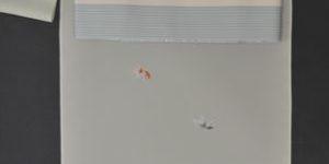金魚柄の絽の小紋をコーディネート