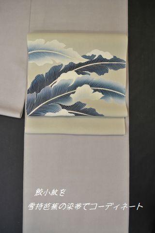 江戸小紋を雪持芭蕉の染帯でコーディネート