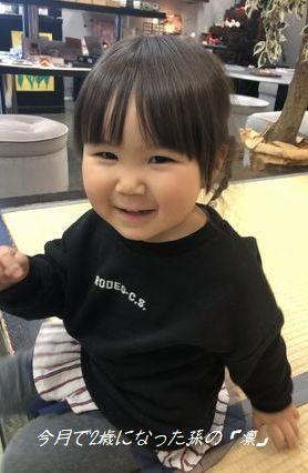 4月で2歳になった孫の「凛(りん)」