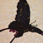 蝶柄の刺繍帯