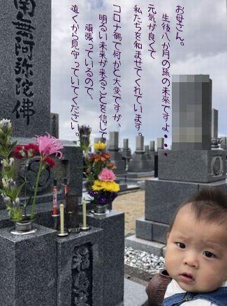 孫の未來とお墓参り