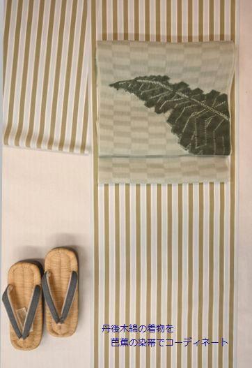 丹後木綿の着物を染帯でコーディネート
